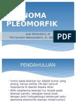 Adenoma Pleomorfik