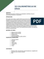 Gp-1.2-Reacciones Colorimetricas de Las Proteinas
