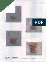 Alimentos Comunes, Medidas Caseras y Porciones3