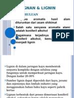 BAB V. Lignin dan Lignan.pptx