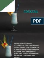 233410291 Cocktail Prezentare