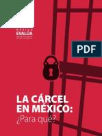 La Cárcel en México, Para Qué