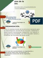 1.2 Principios de La Organizacion