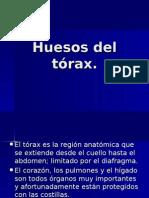 Presentación Huesos Del Tórax