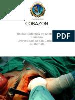 Presentacion CORAZÓN