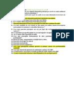 Intrebari Audit (1)