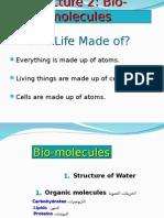 Lecture 2 Biomolecules