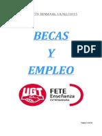 Boletín de Becas y Empleo. Semana Del 10 de Febrero de 2015