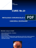 Curs 20 - Cancer Esofagian