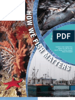 How We Fish Report