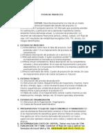 Ficha de Proyecto Tacna 2014