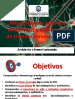 Conferencia 05_Mecanismo de acao dos ansioliticos (1).pdf