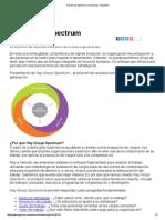 Hay Group Evaluacion de Puestos Hay GroupSpectrum _ Hay Group - Argentina