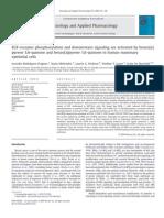EGF Receptor and Downstream...