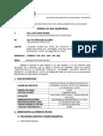 INFORME No 05-OBSERVACION EXP. TEC. CARRETERA VERSALLES - ANTIBAMBA.docx