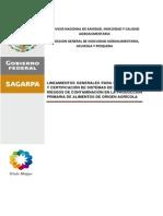 Lineamientos SRRC 27 de mayo.pdf