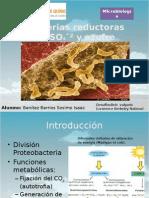 Bacterias Reductoras de Azufre