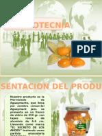 Diapositivas de Gestion