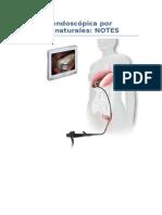 cirugiaendoscopicaporoficiosnaturales-130625111535-phpapp02.docx