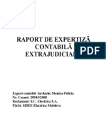 expertiza contabila proiect