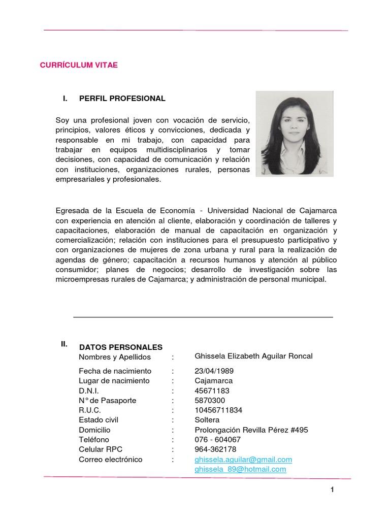 Moderno Resumen Profesional En Currículum Inspiración - Ejemplo De ...