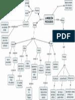 mapa conceptual medicion psicologica