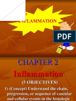 Acute Inflammation 1