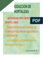 Produccion de Hortalizas en Uruguay