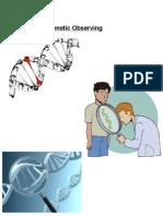Genetic Disorders Report