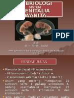 Dr.fahmi,Spog - Embriologi