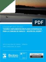 Plan Estrategico de Arauco 2014