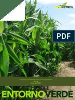 Biocombustibles en Colombia Ecopetrol