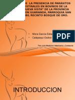 PROYECTO DE PARASITOLOGIA