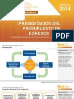 13. Programa Presupuesto 2014