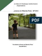 Najurp - Relatorio Direitos Humanos 2012[1]