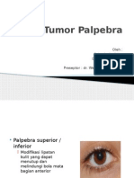 Tumor Palpebra Fix