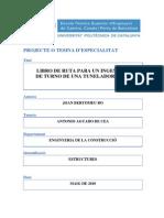 Tesina Joan Bertomeu 2010.pdf