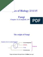 Fungi Lecture 2015