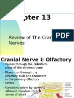 Cranial Nerve Review