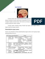 Kelenjar Pituitari.docx