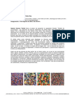 Press Release · Pablo Rey, Ámbito de Acumulación, Carmen Tatché Gallery.  August 2002