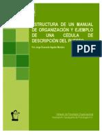 Estructura Manual Organizacion Descripcion Puestos