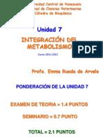 Unidad 7. Integración Metabolica