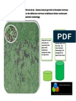 Golf publication.pdf