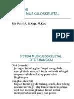 182924314 Anatomi Muskuloskeletal Ppt
