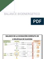 Balance Bioenergetico