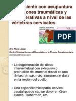 Lesiones Traumaticas Cervicales en Animales Acupuntura