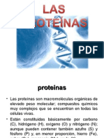 Importancia de las proteínas.