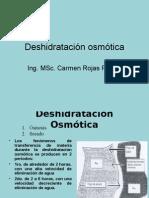 Deshidratación osmótica 13