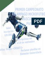 Publicidad Campeonato de Microfútbol -2